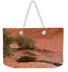 Weekender Tote Bag featuring the photograph Walpa Gorge 01 by Werner Padarin