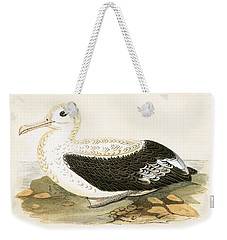 Wandering Albatross Weekender Tote Bag by English School