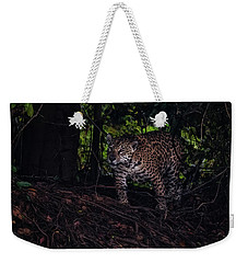 Wandering Jaguar Weekender Tote Bag by Wade Aiken