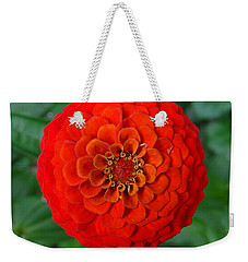 Want An Orange ? Weekender Tote Bag