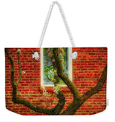 Weekender Tote Bag featuring the photograph Warm Bricks by Mitch Shindelbower