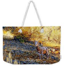 Warm Light Weekender Tote Bag