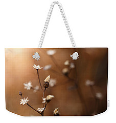 Weekender Tote Bag featuring the photograph Warmed By Light by Shane Holsclaw