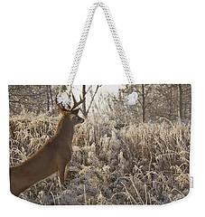 Wary Buck Weekender Tote Bag