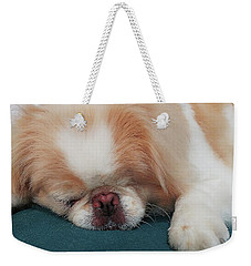 Weekender Tote Bag featuring the photograph Wasabi, Japanese Chin. by Roger Bester