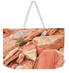 Weekender Tote Bag featuring the photograph Wash 4 Color In Valley Of Fire by Ray Mathis