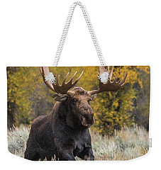 Weekender Tote Bag featuring the photograph Washakie During The Rut Season by Yeates Photography