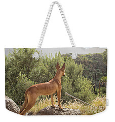 Watchful Dog Weekender Tote Bag by Patricia Hofmeester
