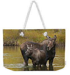 Watchful Moose Weekender Tote Bag