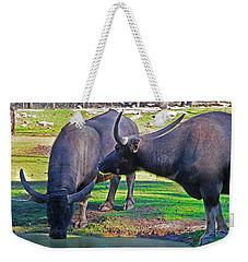 Watching 2 Water Buffalos 1 Water Buffalo Watching Me Weekender Tote Bag