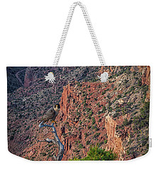 Watching Weekender Tote Bag by David Cote