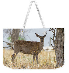 Watching From The Woods Weekender Tote Bag by James BO Insogna