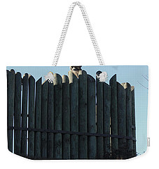 Weekender Tote Bag featuring the photograph Watching by Kim Henderson