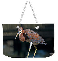 Watching Me Weekender Tote Bag by Kenneth Albin