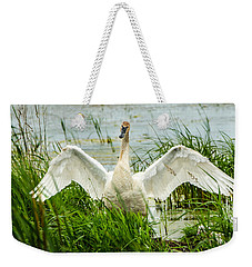 Weekender Tote Bag featuring the photograph Watching Over by Steven Santamour