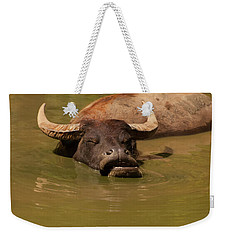 Weekender Tote Bag featuring the photograph Water Buffalo Sleeping by Chris Flees