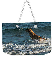 Water Dog Delray Beach Florida Weekender Tote Bag