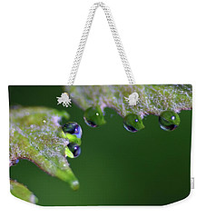 Weekender Tote Bag featuring the photograph Water Droplet IIi by Richard Rizzo