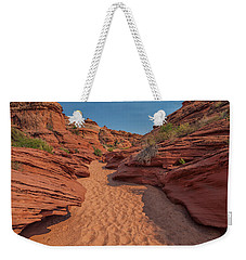 Water Hole Canyon Weekender Tote Bag by David Cote
