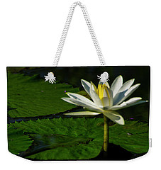 Weekender Tote Bag featuring the photograph Water Lily 1 by Buddy Scott