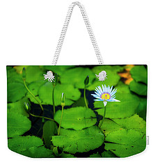 Weekender Tote Bag featuring the photograph Water Logged by Ryan Manuel
