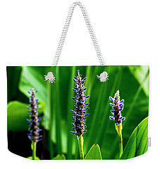 Weekender Tote Bag featuring the photograph Water Plants 2017 1 by Buddy Scott