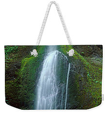Waterfall In Olympic National Rainforest Weekender Tote Bag by Panoramic Images