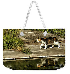Waterfront Walking Kitten Weekender Tote Bag