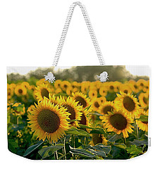 Waving Sunflowers In A Field Weekender Tote Bag