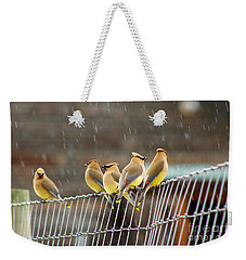 Waxwings In The Rain Weekender Tote Bag