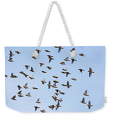 Weekender Tote Bag featuring the photograph Waxwings by Mircea Costina Photography