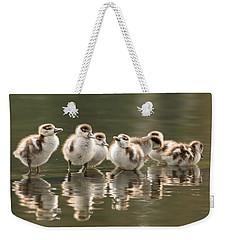We Are Family - Seven Egytean Goslings In A Row Weekender Tote Bag