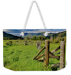 Weathered But Standing Weekender Tote Bag by John Roberts