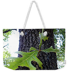 Weekender Tote Bag featuring the photograph Wekiwa Springs State Park Oakleaf Cluster by Chris Mercer