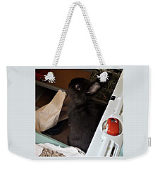 Weekender Tote Bag featuring the photograph Welcome To My Humble Abode by Denise Fulmer