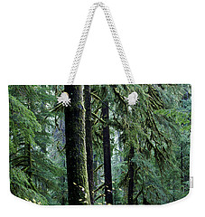 Welcome To The Woods Weekender Tote Bag