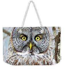 Well Hello - Great Gray Owl Weekender Tote Bag