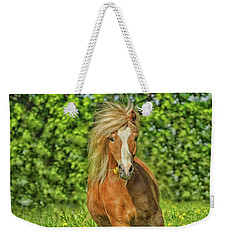 Welsh Pony Weekender Tote Bag