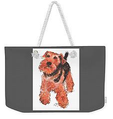 Welsh Terrier Or Schnauzer Watercolor Painting By Kmcelwaine Weekender Tote Bag