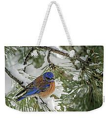 Western Bluebird In A Snowy Pine Weekender Tote Bag