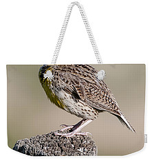 Weekender Tote Bag featuring the photograph Western Meadowlark by Gary Lengyel
