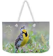 Western Meadowlark Weekender Tote Bag by Jack Bell