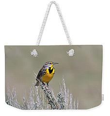 Western Meadowlark Weekender Tote Bag by Michael Morse