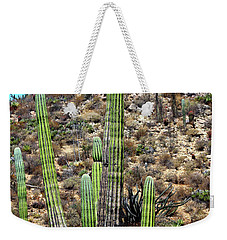 Western Mexican Cactus Tree Weekender Tote Bag
