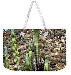 Western Mexican Cactus Tree Weekender Tote Bag