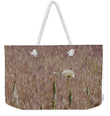Western Salsify Seed Head Weekender Tote Bag