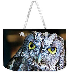 Weekender Tote Bag featuring the photograph Western Screech Owl by Anthony Jones