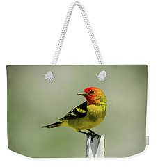 Western Tanager At The Ranch Weekender Tote Bag