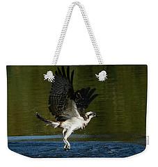 Wet And Wild 3 Weekender Tote Bag