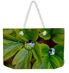 Wet Bleeding Heart Leaves Weekender Tote Bag